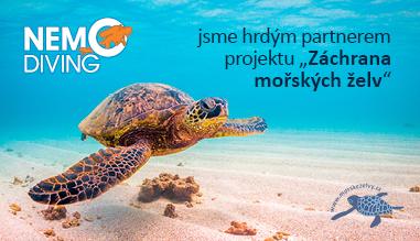 záchrana mořských želv